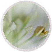 Garlic Chive Blossom Round Beach Towel