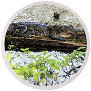 Gator Camoflage Round Beach Towel
