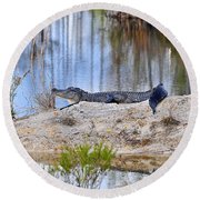 Gator On The Mound Round Beach Towel