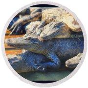 Gator Pals Round Beach Towel