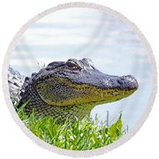 Gator Smile Round Beach Towel