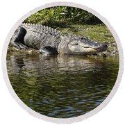 Gator Smile Round Beach Towel