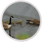 Geese And Goslings At The Flint River Round Beach Towel