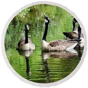 Geese And Green Round Beach Towel