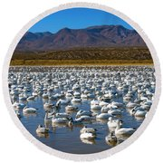 Geese At Bosque Del Apache Round Beach Towel by Kurt Van Wagner