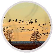Geese In Flight I Round Beach Towel