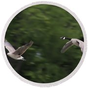 Geese Pair In Flight Round Beach Towel
