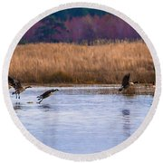 Geese Up And Away Round Beach Towel
