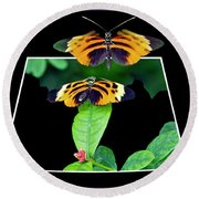 Gentle Butterfly Courtship 01 Out Of Bounds Round Beach Towel