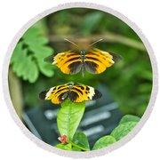 Gentle Butterfly Courtship 01 Round Beach Towel