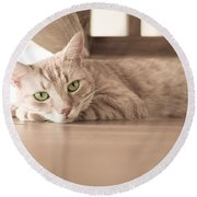 George The Cat Round Beach Towel