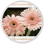 Gerber Daisy Happiness 5 Round Beach Towel