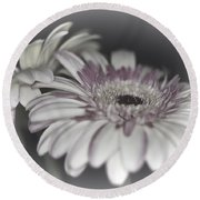 Gerbera Dream 1 Round Beach Towel