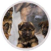 German Shepherd Puppy Collage Round Beach Towel