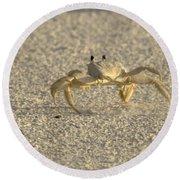 Ghost Crab Round Beach Towel