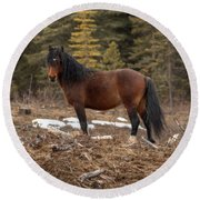Ghost Forest Stallion Round Beach Towel