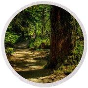 Giant Douglas Fir Trees Collection 2 Round Beach Towel
