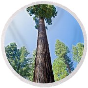 Giant Sequoia In Mariposa Grove In Yosemite National Park-california  Round Beach Towel