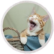 Ginger Kitten Yawning Round Beach Towel