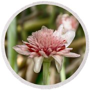 Ginger Plant Flower Round Beach Towel