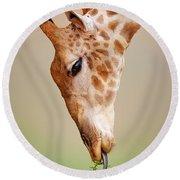 Giraffe Eating Close-up Round Beach Towel