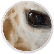 Giraffe Eye Round Beach Towel