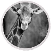 Giraffe Face In Black And White Round Beach Towel