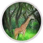 Giraffe In Florida Round Beach Towel