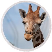 Giraffe Portrait Round Beach Towel