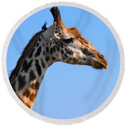 Giraffe Portrait Close-up. Safari In Serengeti. Tanzania Round Beach Towel