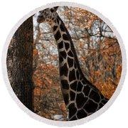 Giraffe Posing Round Beach Towel