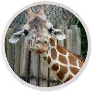 Giraffe-really-09025 Round Beach Towel