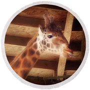 Giraffe Smarty Round Beach Towel
