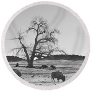 Give Me A Home Where The Buffalo Roam Bw Round Beach Towel