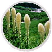 Glacier Beargrass Swiftcurrent Pass Round Beach Towel