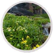 Glacier Lilies And Globeflower Beside A Mountain Stream Round Beach Towel
