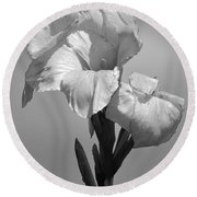 Gladiola In Black And White Round Beach Towel