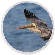 gliding by Pelican Round Beach Towel