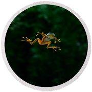 Gliding Frog In Flights Round Beach Towel