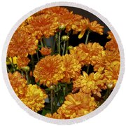 Glorious Golden Mums Round Beach Towel