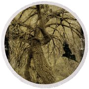 Gnarled And Twisted Tree With Crow Round Beach Towel