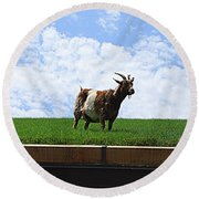 Goat On A Sod Roof In Sister Bay In Wisconsin Round Beach Towel