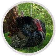 Gobble Gobble Round Beach Towel