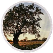Goddess Tree 2 Round Beach Towel