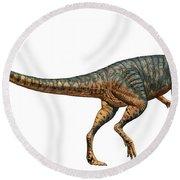 Gojirasaurus Dinosaur Round Beach Towel