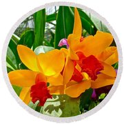 Gold And Red Orchids At Maerim Orchid Farm In Chiang Mai-thailan Round Beach Towel