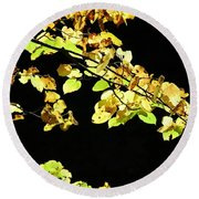 Gold On Black Round Beach Towel