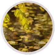 Golden Autumn Colour Foliage On Rainy Pond Round Beach Towel
