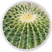 Golden Ball Cactus Round Beach Towel