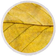 Golden Beech Leaf Round Beach Towel